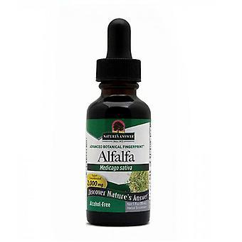 Nature's Answer Alfalfa, ORGANIC ALCOHOL FREE, 1 OZ