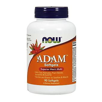 Nyt Elintarvikkeet Adam Men's Multiple Vitamin, 90 Softgels