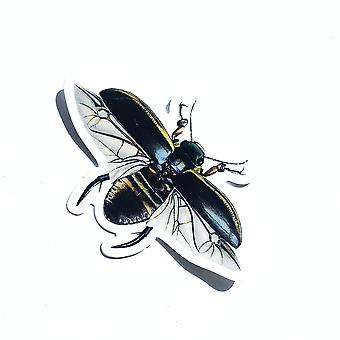 Vintage Beetle Vinyl Sticker