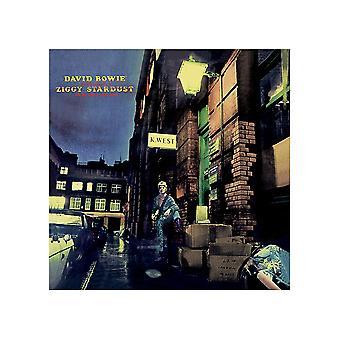 David Bowie Ziggy Stardust Canvas Print