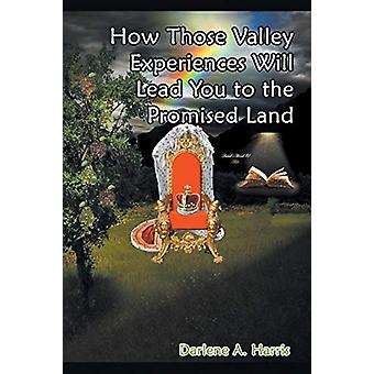How Those Valley Experiences Will Lead You to the Promised Land by Da