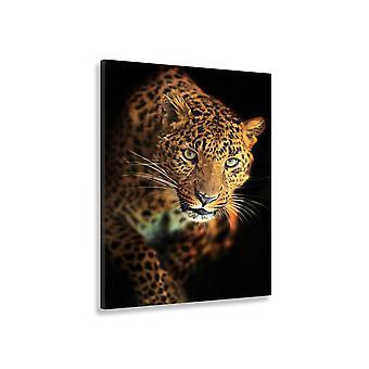 Leopard Malarstwo