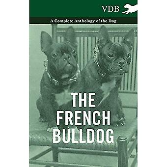 The French BullDog A Complete Anthology of the Dog