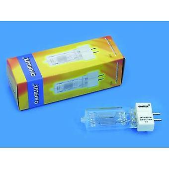 Omnilux Studiolampe Halogen 230 V GX9.5 650 W White