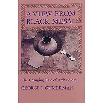A View from Black Mesa: het veranderende gezicht van archeologie