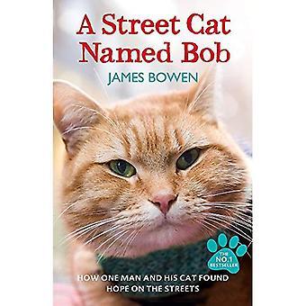 A Street katt heter Bob