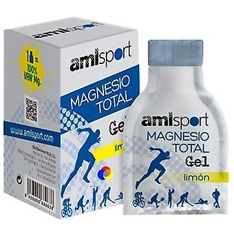 Amlsport totalt Magnesium Gel Limon (12 kuvert X 10 Ml)