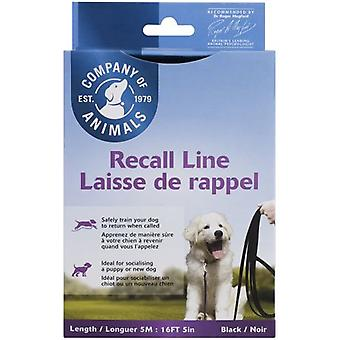 The Company Of Animals Long Line 5 M. (Dogs , Collars, Leads and Harnesses , Leads)