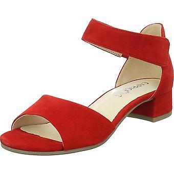 Caprice Carla 992821224524 universal summer women shoes