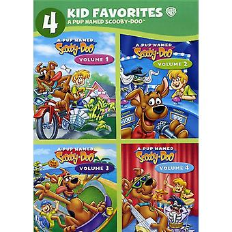 Pup Named Scooby-Doo [DVD] USA import