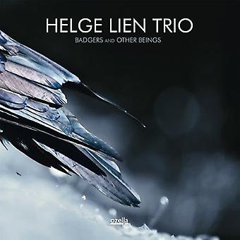 Helge Lien - Badgers & Other Beings [CD] USA import