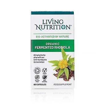 Living Nutrition Organic Fermented Rhodiola Caps 60 (LN2015)