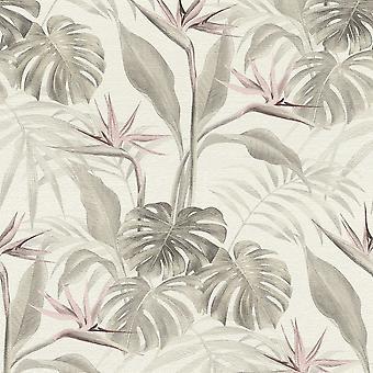 Rasch Mandalay Plantes tropicales Rose Fond d'écran 529005