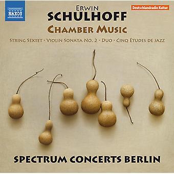 Schulhoff / Brovtsyn / Sokolov - Schulhoff: importazione di musica da camera [CD] Stati Uniti d'America