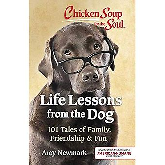 Chicken Soup for the Soul:� Life Lessons from the Dog: 101 Tales of Family, Friendship & Fun