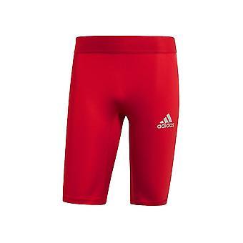 Adidas Baselayer Alphaskin CW9460 training summer men trousers