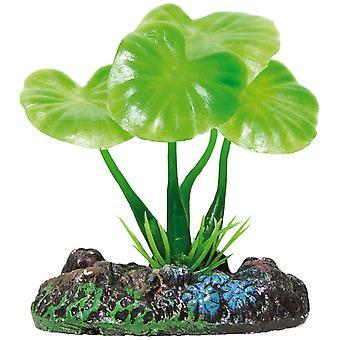 Su Bitkileri Planta de Plástico Rotala Rotundifolia