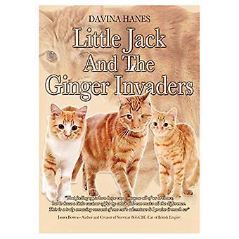 Little Jack & the Ginger Invaders by Davina Hanes - 9781916427105