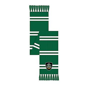 Pañuelo de Harry Potter Slytherin House