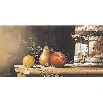Fruit Trio Poster Print by John Rossini (24 x 12)