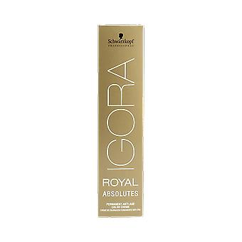 Schwarzkopf Igora Royal Absolutes Age Blend 7-710 medium Blonde miedź Ash 60ml