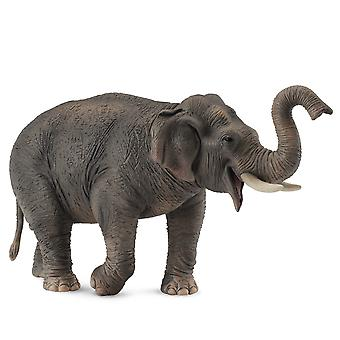 CollectA Asian Elephant