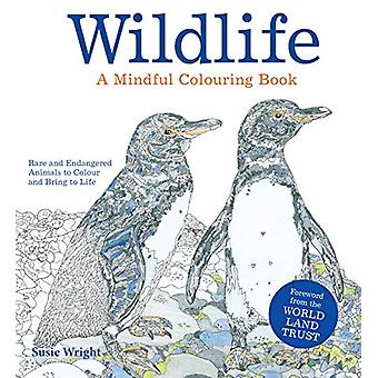 WILDLIFE - A Mindful Colouring Book - Rare and Endangered Animals to Co
