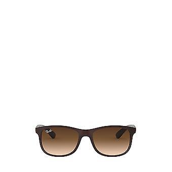 Ray-Ban RB4202 mattbraun auf braune Unisex Sonnenbrille
