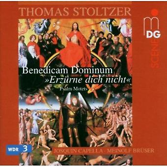 T. Stoltzer - Stoltzer: Psalm Motets [CD] USA import