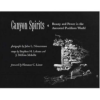 Canyon alkoholit: Kauneuden ja voiman vanhaan Puebloan maailmassa