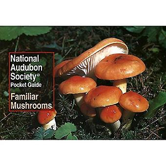 Guía de bolsillo para familiares setas de norte Americ (guías de bolsillo de la sociedad nacional Audubon)