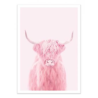 Art-Poster - Highland cow - Paul Fuentes 50 x 70 cm