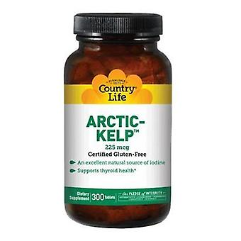 Country Life Arctic-Kelp, 225 mcg, 300 Tabs