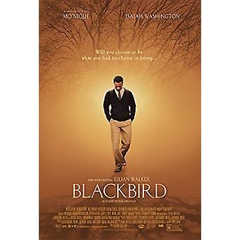 Blackbird [BLU-RAY] USA import