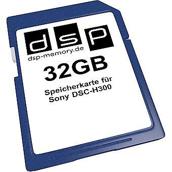 FengChun 32GB Speicherkarte fr Sony DSC-H300