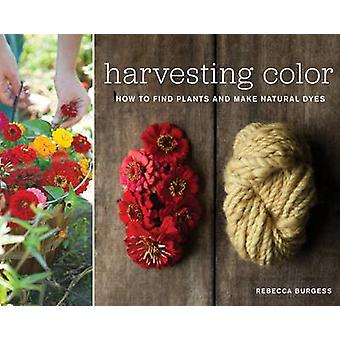 Harvesting Colour How to Find Plants and Make Natural Dyes by Rebecca Burgess