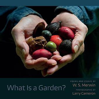 Vad är en trädgård?