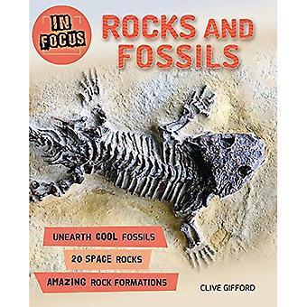 I fokus: Klippor och fossil (i fokus)
