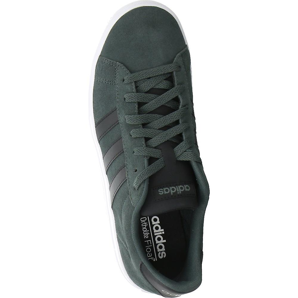 Adidas Daily 20 F34576 Universell Hele Året Menn Sko