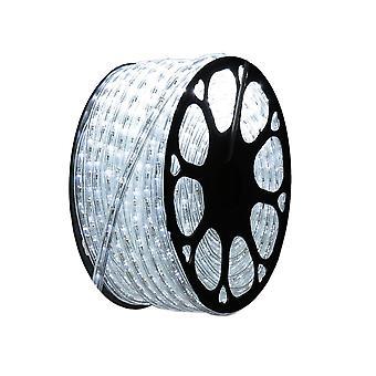 Jandei Hilo luminoso LED para decoración de color blanco frío, bobina 50m, instalación exterior, estanco IP65, 220-240V con rectificador, corte 0,5m, navidad, fiesta, evento