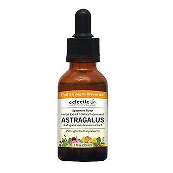 Eclectic Institute Inc Astragalus Spearmint, 2 oz alkoholiton
