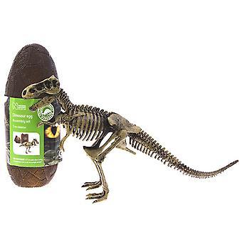 T Rex Model Skeleton 13 piece Construction Kit in a Dinosaur Eg