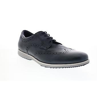 Geox U Blainey Mens Blue Leather Oxfords & Lace Ups Wingtip & Brogue Chaussures