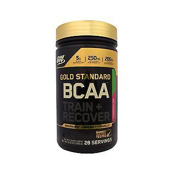 Optimal näring efter träning Protein Shake - Muskelåterhämtning - 266g