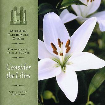 Mormon Tabernacle Choir - Consider the Lilies [CD] USA import