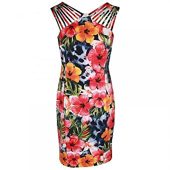 Frank Lyman Sleeveless Floral Print Dress