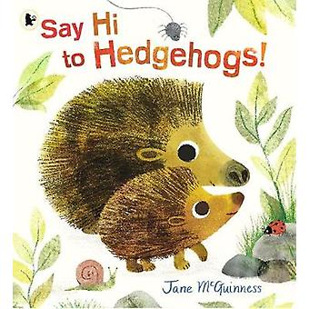 Say Hi to Hedgehogs! by Jane McGuinness - 9781406385830 Book