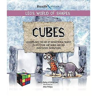 Cubes by Gerry Bailey - 9781910828212 Book