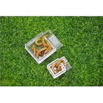 Akryl potravin feeder prostor pro hmyz