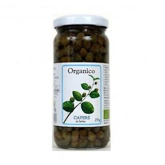 Organico - Org Capers in Brine 250 g